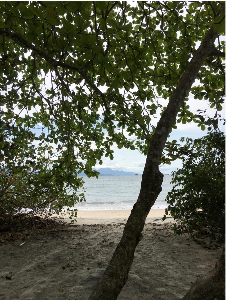 ilha36